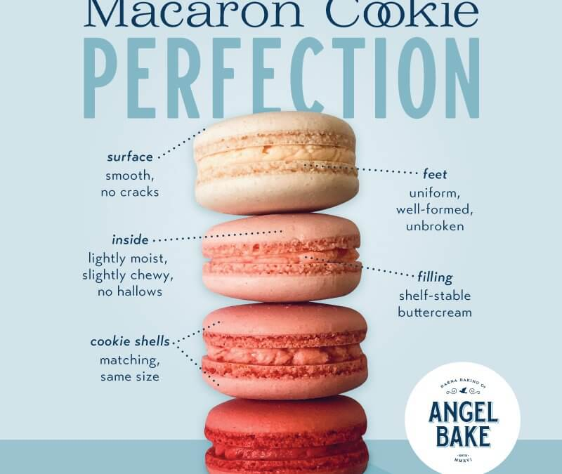 The Angel Bake Macaron Anatomy